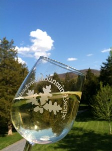 Shadow Mountain Escape wine glass