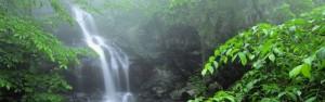 Shenandoah Water Fall