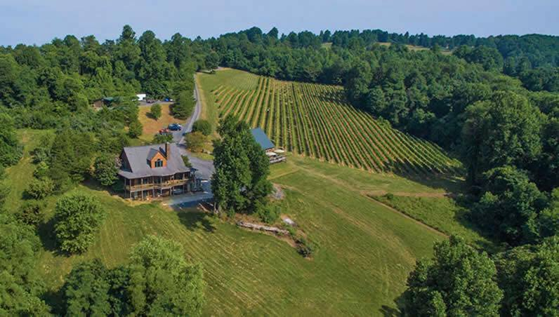 Chester Gap vineyard and house a