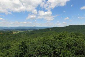 Views…near the Shenandoah National Park – Woodland Conservation!